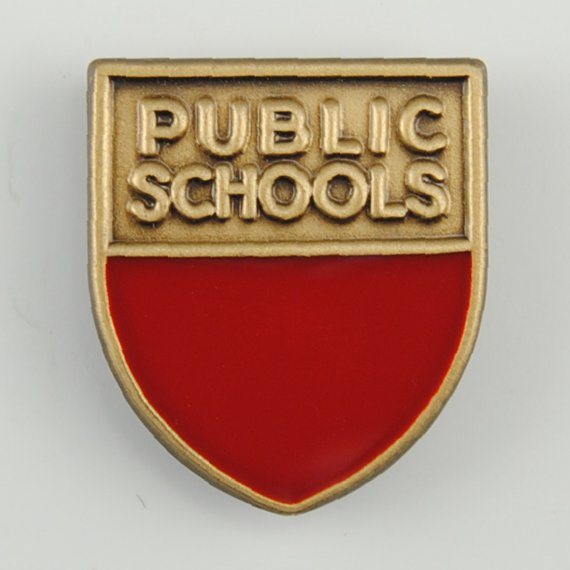 Teacher Recognition Week Gift Custom Lapel Pin - Public Schools